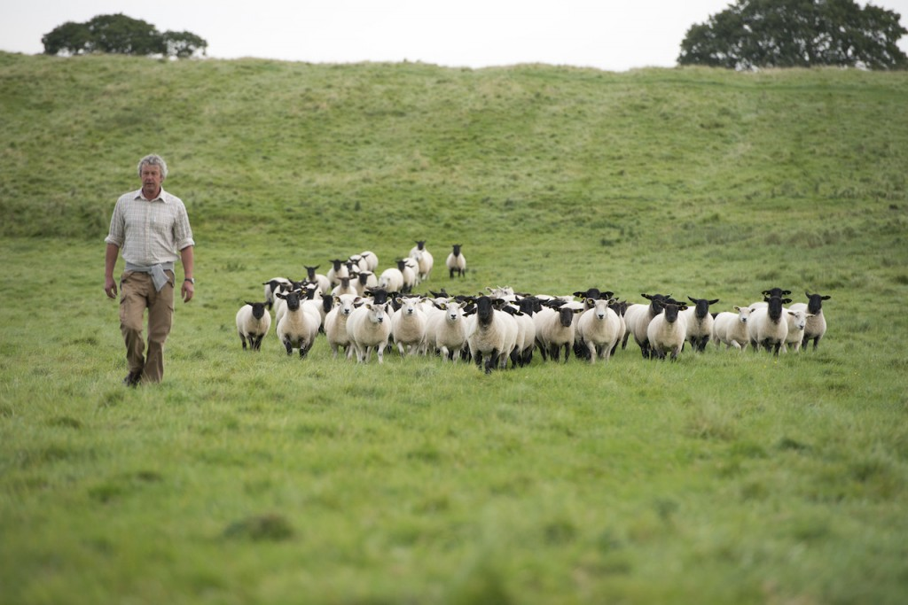 Farmer with his sheep